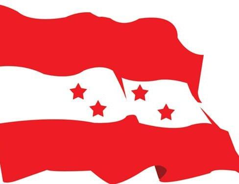 nepali-congress-flag.2e16d0ba.fill-650×500